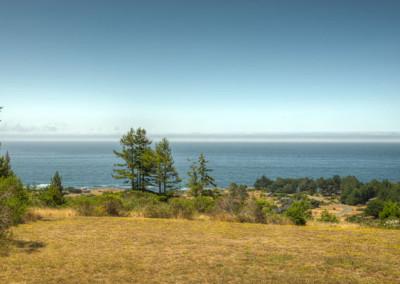 ocean view from deckLupine-1